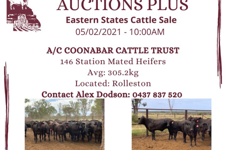 AUCTIONS PLUS - COONABAR