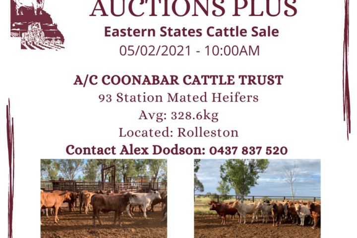 AUCTIONS PLUS - COONABAR - 93